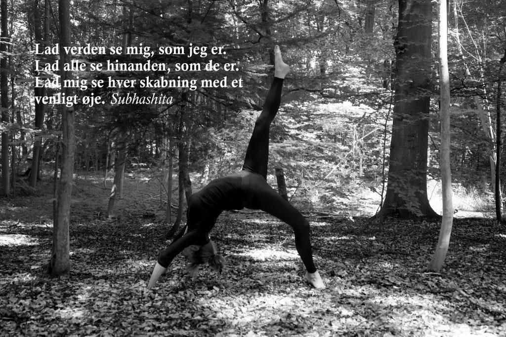 Chakrasana (hjulstilling) ved yogalærer Lotte Voetmann Stevns- min undervisningsform