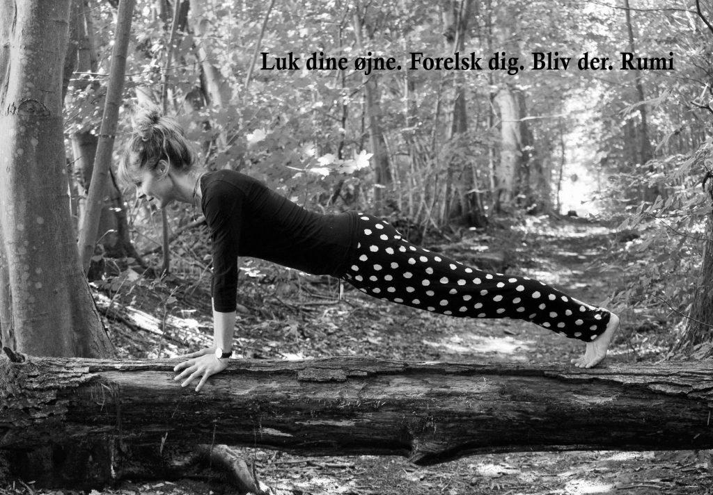 Kumbhakasana (plankestilling) ved yogalærer Lotte Voetmann Stevns- hvorfor er yoga godt